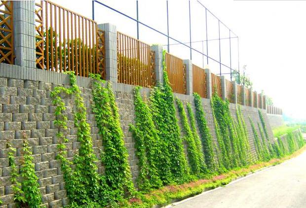 建筑腾讯分分彩计划哪个好安徽某生态林场的附属建筑基础设施工程